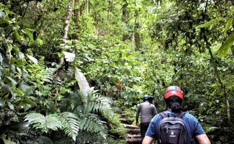 年轻的巴西人越来越热衷于与保护和生物多样性相关的话题