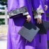 研究表明该计划成功增加了对公立大学的私人捐款