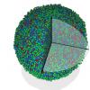 首次使用无定形固体进行3D原子成像解决了一个世纪的问题