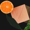 柑橘衍生物可使透明木材100%可再生