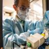 材料科学家为燃料电池创造了更强的钴