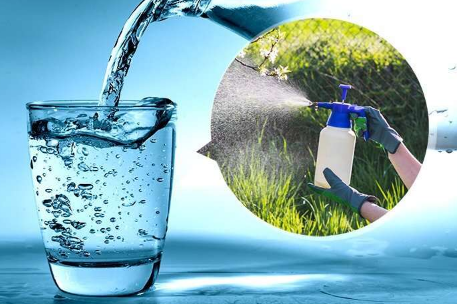 用于水中除草剂检测的超灵敏晶体管