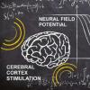 数学家计算中风后治疗的波速