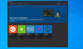 微软Windows11可以无缝运行图形Linux应用程序