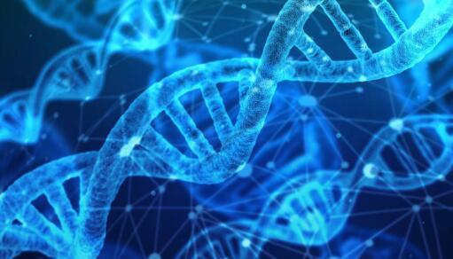 23andMe为2型糖尿病易感性增加了新的基因检测