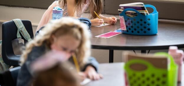 替代评估方法可以提高创造力教育者对学生学习的洞察力