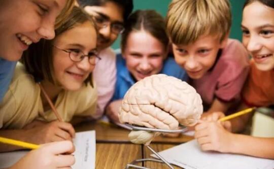 教育解决方案的多种途径